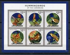 St Kitts 2013 MNH Hummingbirds of Carribean 6v M/S Hummingbird Birds Stamps