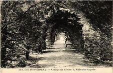 CPA  Ile Saint Honorat - Abbaye de Lérins - L'Allée des Cypres  (488583)