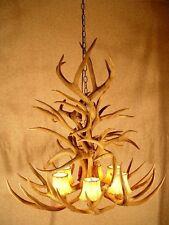 Real Antler Whitetail / Mule Deer Chandelier, Lights, Rustic Lodge Lighting