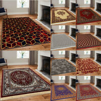 Traditional Area Rug Living Room Bedroom Carpet Hallway Runner Kitchen Floor Mat