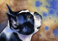 Boston Terrier Painting Dog 8 x 10 Art Print Signed by Watercolor Artist Djr