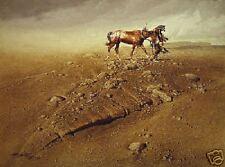 "**Frank McCarthy ""LONE SURVIVOR"" Indian-Horse-Pony-Art*"