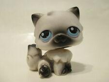Littlest Pet Shop Cat Persian 60 Authentic Lps Blemished As Shown