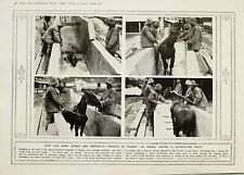 1916 WWI WW1 PRINT ARMY HORSES IN FRANCE TREATED DISINFECTING BATH