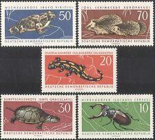 Germany 1963 Hedgehog/Toad/Tortoise/Beetle/Animals/Nature/Wildlife 5v set (b467)
