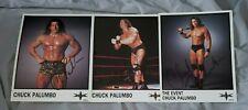 CHUCK PALUMBO Lot of 3 autographed WCW Publicity Photo w/ COAs * WWE