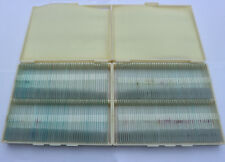 200pc Prepared Animal Insect Specimen Slides for Professional Toy Microscope