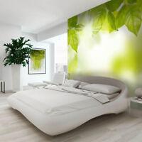 Fototapete Vlies Die grüne Energie - Tapete  Fototapeten Für Schlafzimmer FDB350