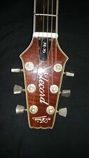 Aria Elecord Fe-70 Acoustic/Electric