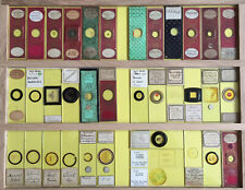 36 Vintage Microscope Slides -- Variuos Subjects - Set #5