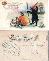 ANTIQUE HALLOWEEN POSTCARD - WITCH BLACK CAT w/ MICE