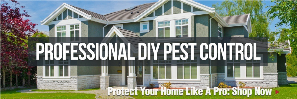 Solutions Pest and Lawn