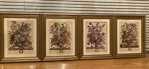 Flower Print Lithographs  Summer, Autumn, Winter, Spring Robert Furber 4 SEASONS