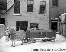 Horse & Wagon Sled in the Snow, Woodstock, Vermont - 1939 - Historic Photo Print