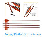Carbon Arrows Spine 400 for Recurve Bow Compound Bow Screw in Tips Hunting 6Pcs