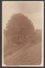 Postcard Gomeldon Beeches nr Salisbury Wiltshire man with gun and dog RP by May