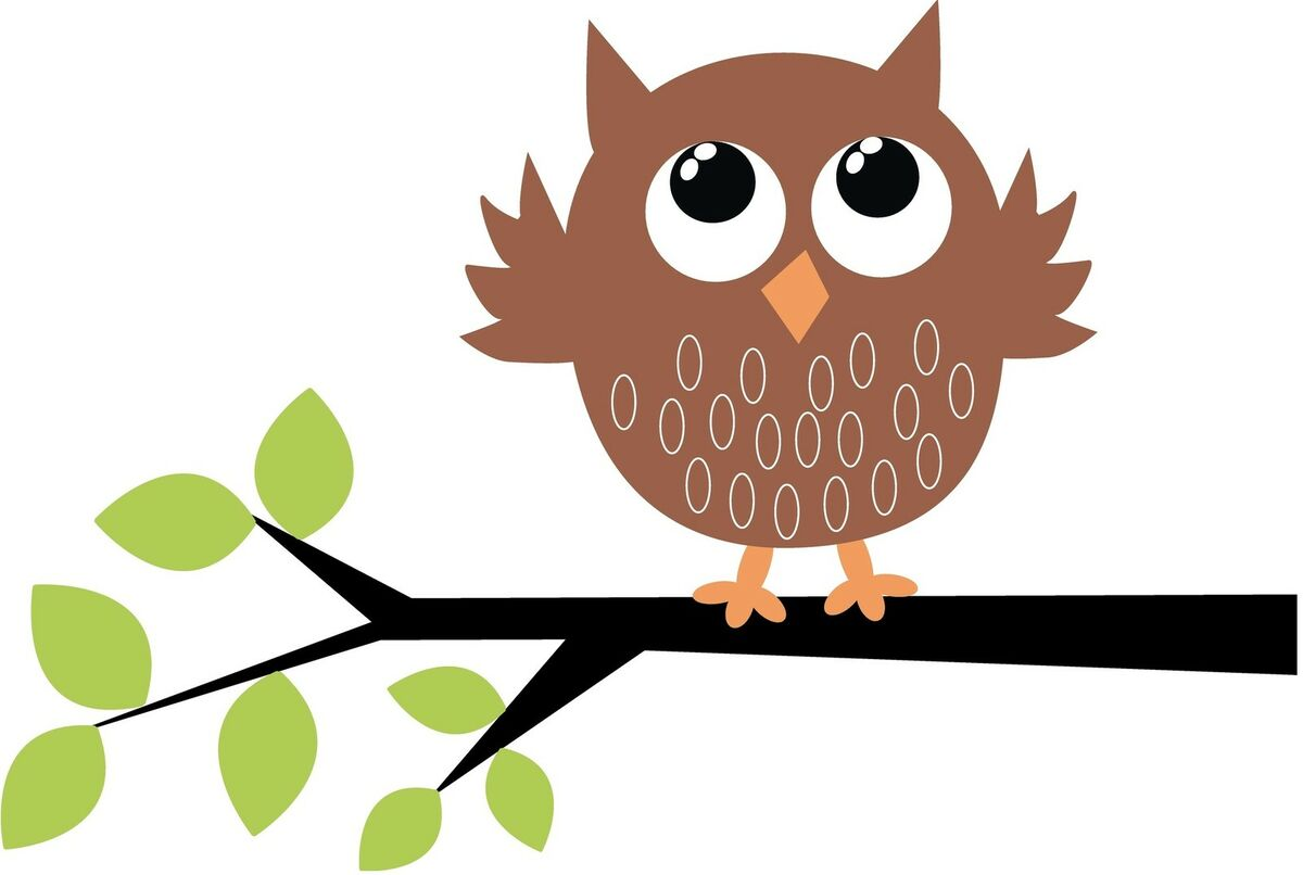Wise Owl Resale Shop
