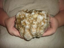 487 ONE LARGE  NATURAL KENTUCKY GEODE WHOLE UNOPEN  5 LB 2 OZ