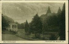 Alte AK. Bad Wildungen Fürstenhof vom Kurpark aus/gel.1923/Briefmarke