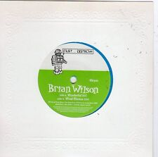 Brian Wilson-Wonderful (VG+ Blue Vinyl)