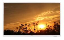 Philips 32 Zoll Full-HD Fernseher 80cm Diagonale Modell 32PFS5603, Weiß