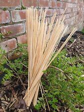 Bamboo Wooden Plant Sticks 25-100 X 40cm Garden Plants Support Canes Flower Cane