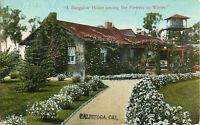 Postcard A Bungalow Home...Calistoga, CA