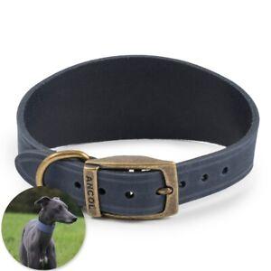 BLUE LEATHER WHIPPET COLLAR Sighthound Lurcher Greyhound Wide Neck Band UK MADE