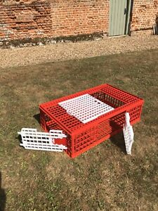 Chicken/Pheasant Transport Crate,Two opening side doors,one sliding top,new.