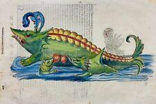 Coriolano; Aldrovandi Large folio woodcut - SEA MONSTER Baleen WHALE 1638