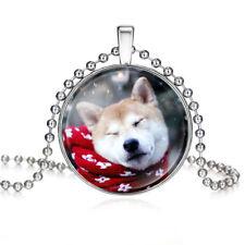 Hund Schmuck. Silberner Anhänger Akita Inu aus Acrylglas auf einer Halskette.