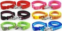 Dog Collar and Lead Leash Set Puppy XS Small Medium Nylon Clip Tough Strong Cute