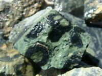 KAMBAMBA CROCODILE JASPER - 2000 Carats - Rough Rocks Cabbing Tumbling Stones