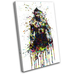 Mike Tyson Boxing Colourful Sports SINGLE CANVAS WALL ART Picture Print