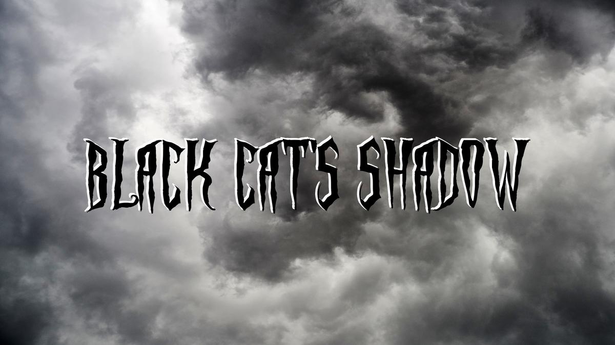 Black Cat's Shadow Movie Store