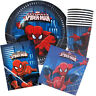 SPIDERMAN PARTY PACK 40PCE BIRTHDAY PARTY SUPPLIES PLATES CUPS NAPKINS LOOT BAGS