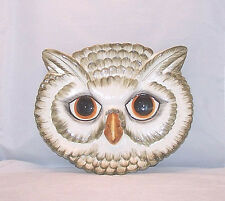 Plaque Wall Art Porcelain Wall Hanging Animal Bird Owl Face Made in Italy 10x8