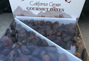 5 LB-FRESH SMALL-DATES SWEET AND JUICY. GREAT HEALTHY SNACK.  NO CHEMICALS!!