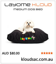 NEW Lay'O'Me Dog Bed (Foam Filled)