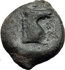 Carthage in Zeugitana 300BC Authentic Ancient Greek Coin Horse Palm tree  i58445