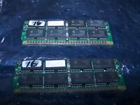 Two 16MB 30 Pin Non Parity SIMM's for Macintosh