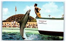 Postcard Trained Porpoise Jumping, Seaquarium, Miami, Fl 1960's B40