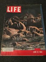 LIFE MAGAZINE JUNE 27, 1960 ALASKAN WALRUS GOOD CONDITION
