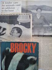 SYLVIA SHEPHERD.BROCKY.1ST/1 H/B D/J 1964,B/W PHOTOS,PLUS NEWS CUTS,PET BADGER