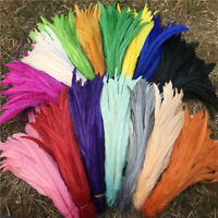 Wholesale 10/50/100 pcs beautiful rooster tail feathers 10-18 inches / 25-45 cm