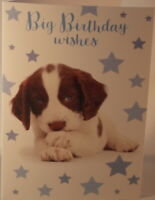 Big Birthday Wishes birthday card with cute puppy picture 19.75cm x 13.5cm