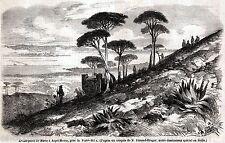 ASPROMONTE:Avamposto Volontari Calabresi di Garibaldi.Calabria.Risorgimento.1860