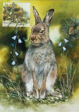 The Mountain Hare Lepus Timidus Rabbit Aland Finland Maxi FDC 2017