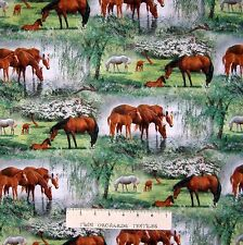 Wild Wings Nature Fabric - Willow Brook Horse Pasture Scene - Springs YARD