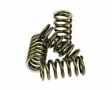 Peugeot XR6 50  Malossi MHR Reinforced Clutch Spring Set (4)